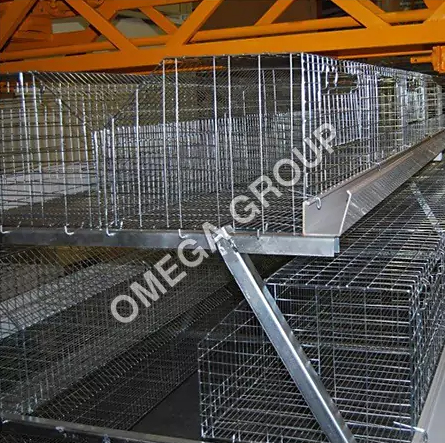 Poultry Cages (Manual California Semi Automatic)